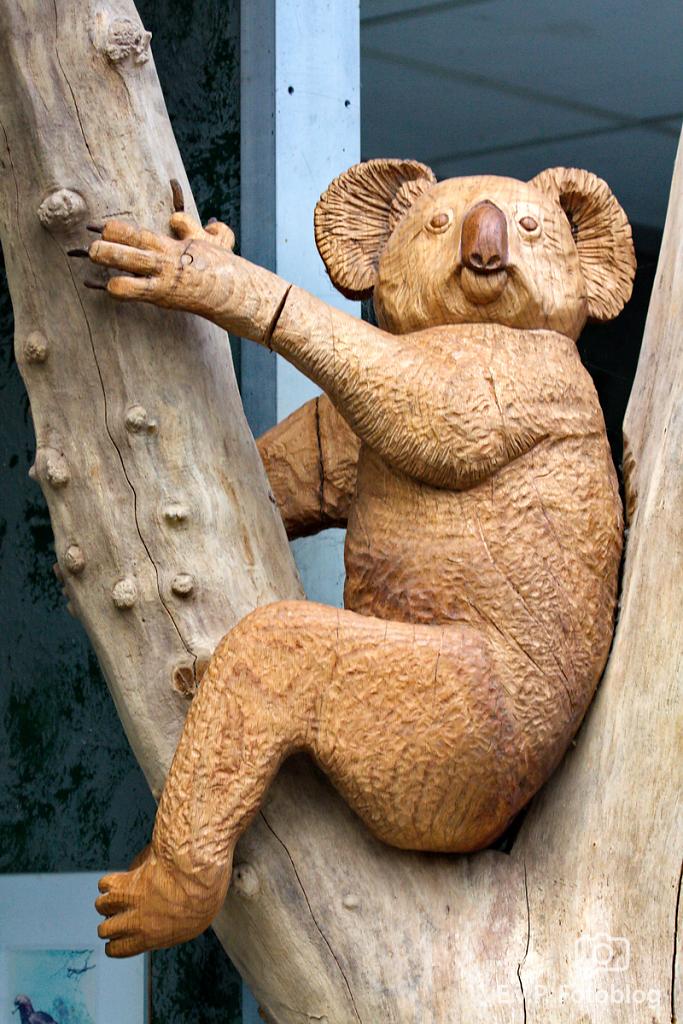 Zoo-Duisburg-0812-023.png